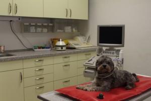 Labor/ Behandlungszimmer 2